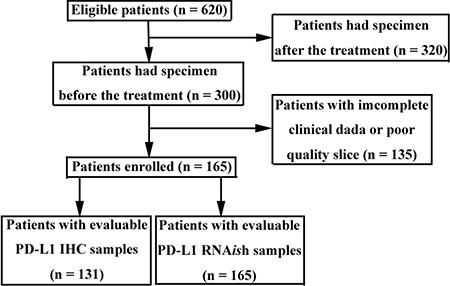 Flow chart of patient screening.
