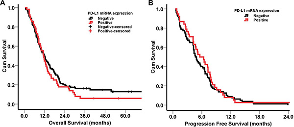 Kaplan-Meier survival curves according to PD-L1 mRNA expression.