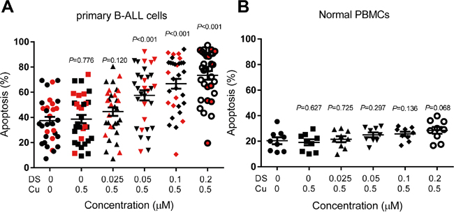 DS/Cu induces apoptosis in primary adult B-ALL cells but not normal PBMCs.