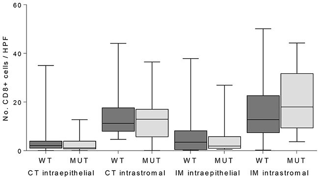 Quantification of CD8-positive T-cells in intraepithelial and intrastromal components in the center of the tumor (CT) and invasive margin (IM) in JAK1 wildtype (WT) and mutant (MUT) MSI endometrial cancers.