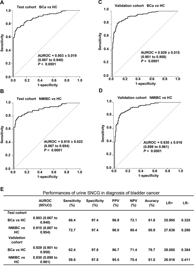 Diagnostic performance of the SNCG ELISA for all BCa and NMIBC patients versus healthy controls.