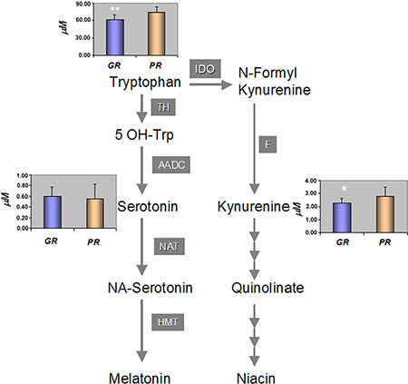 Tryptophan catabolic pathway and the mean concentration [μM] of metabolites among the GR and PR groups of patients.