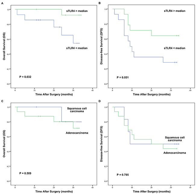 OS and DFS curves of 28 early-stage NSCLC patients after surgery assessed by Kaplan–Meier analysis according to serum sTLR4 levels or pathological types.