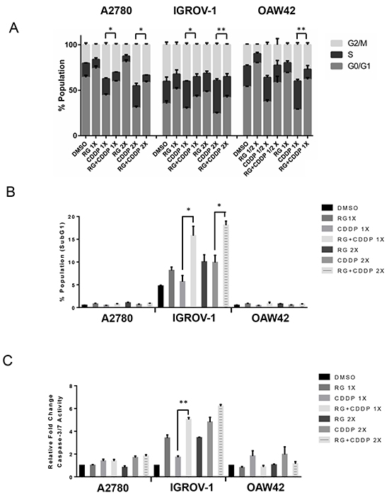 Combination of RG7388 with cisplatin affects the cell cycle distribution and apoptotic endpoints.