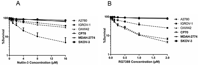 Clonogenic survival for the panel of ovarian cancer cell lines.