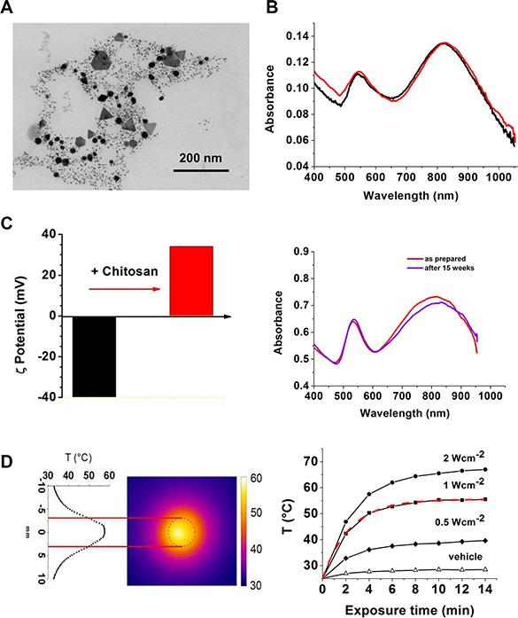 Nanoparticle characterization.