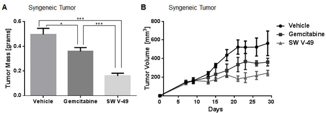 SW V-49 outperforms gemcitabine in stroma-dense models of pancreatic cancer.