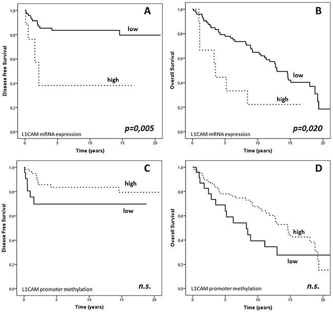 PFS and OS based on L1CAM expression and L1CAM promoter methylation in the endometrial cancer cohort.