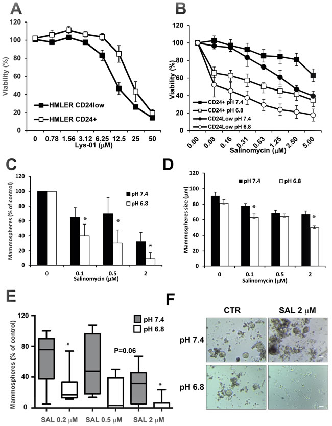 Cytotoxic activity of SAL on breast cancer stem cells.