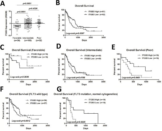 ITGB3 expression and correlation with overall survival (OS) in AML patients.