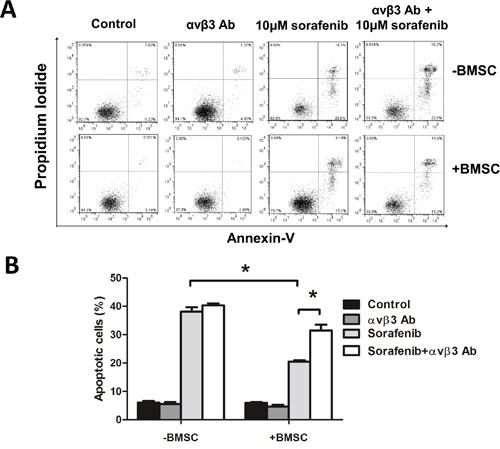Blocking integrin αvβ3 increased leukemia sensitivity to sorafenib in BMSCs.