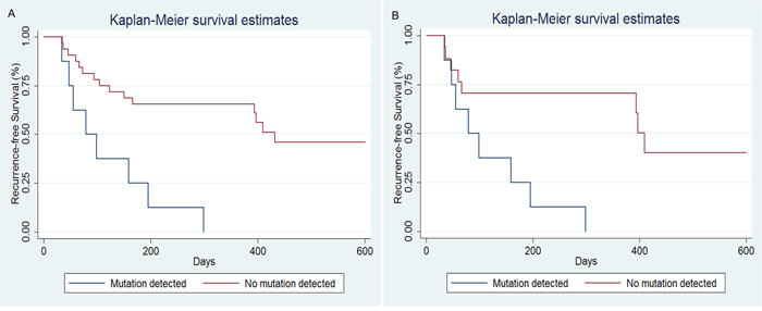 Recurrence-free survival (RFS) curves for HCC patients included in our study.