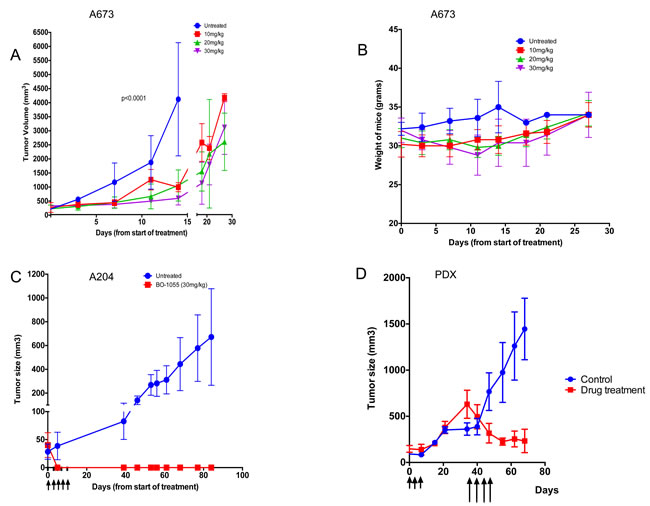 BO-1055 inhibits Ewing sarcoma tumor growth in NSG mice and and causes complete regression of rhabdoid tumor growth in nude mice.