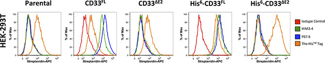 Phenotyping of engineered HEK293T cells with CD33 antibodies.