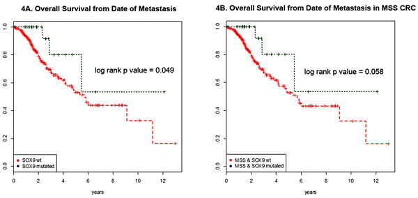 Survival curves of metastatic