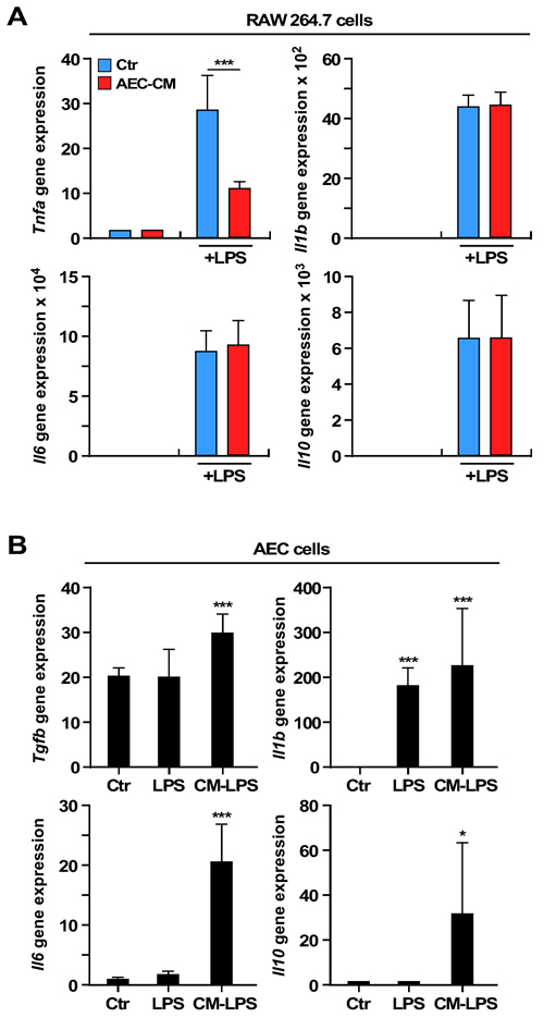 Expression of interleukins and cytokines mRNAs in RAW 264.7 and AEC cells.