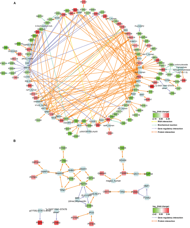 Interaction network constructed with some of the MS-identified DEPs.