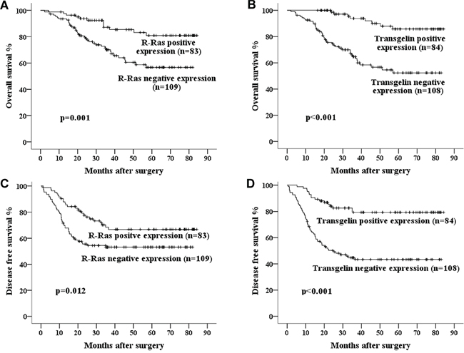 Kaplan–Meier curves of 5-year OS and DFS in patients with