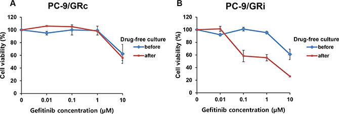Long-term stability of gefitinib resistance in two cell lines established with continuous or intermittent exposure to gefitinib.