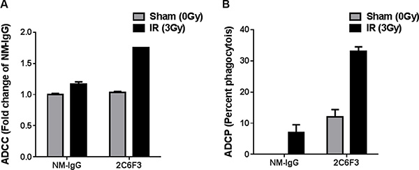 2C6F3 antibody activates ADCC and ADCP in vitro.