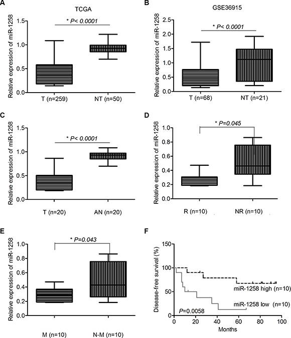miR-1258 was significantly downregulated in HCC and associated with patients' survival.