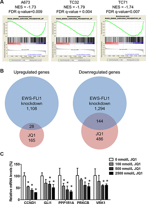 JQ1 suppresses EWS-FLI1-dependent transcription.