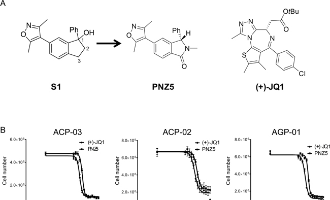 A. BET inhibitors used in the study (+)-JQ1 and (PNZ5) as well as lead compound S1.