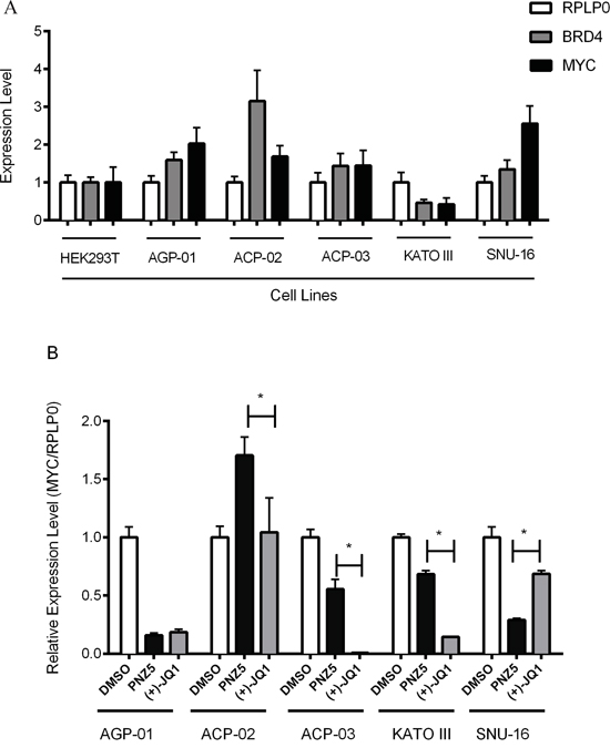 Expression profile of BRD4 and c-MYC mRNA levels by qRT–PCR in a panel of gastric cancer cell lines.