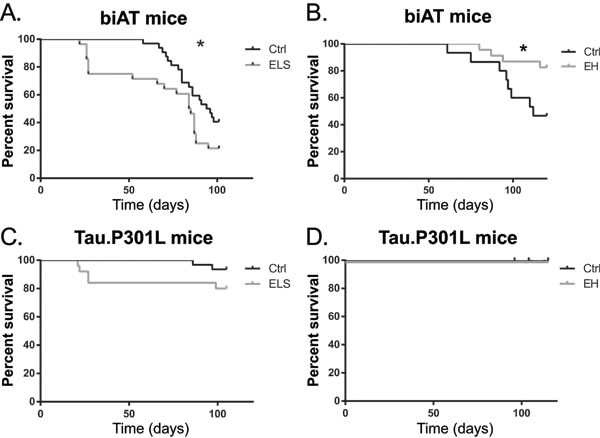 ELS exacerbates early death while EH prolongs survival of young biAT mice.