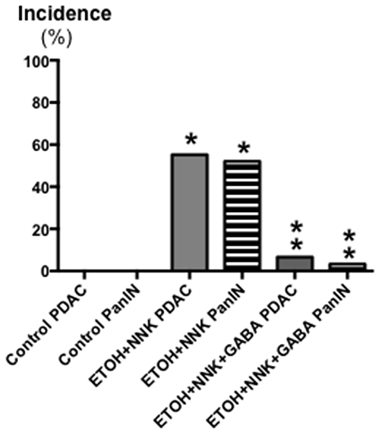Effects of GABA supplementation on the incidence (%) of PDACs and PanINs in controls, hamsters treated prenatally with ETOH and NNK and in hamsters treated prenatally with ETOH and NNK followed by GABA supplementation in the drinking water at 4 weeks of age.
