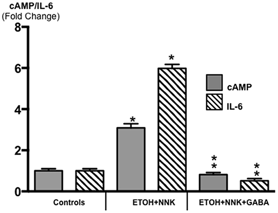 Modulation of intracellular cAMP and the pro-inflammatory cytokine IL-6 in exocrine pancreatic cells and tumor cells as assessed by ELISA assays.