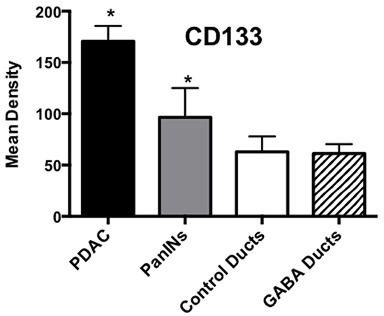 Results of densitometry for the quantitative assessment of CD133 immunoreactivity.