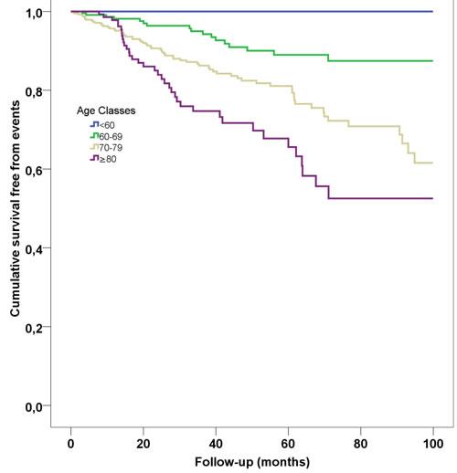 Kaplan-Meier survival curves according to age classes.