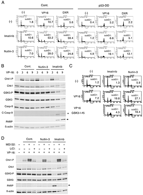 Nutlin-3 down regulates Chk1-mediated G2/M checkpoint activation induced by etoposide in BCR/ABL-expressing cells through different mechanisms from imatinib.