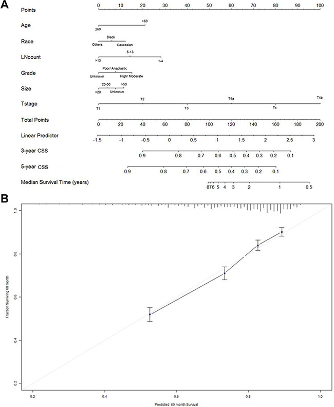 Nomogram for predicting 3- and 5-year cause specific survival (CSS) of gastric cancer patients.