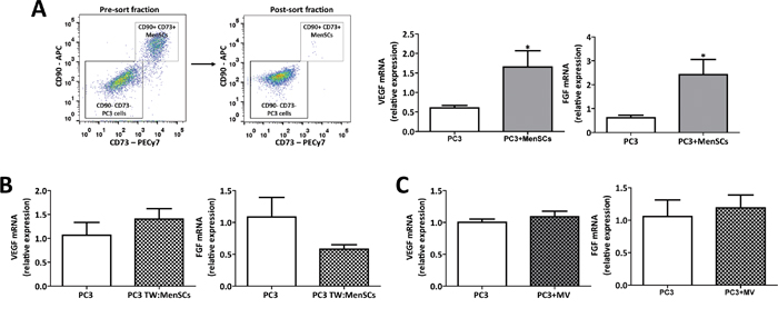 MenSCs-derived exosomes specifically decrease angiogenesis in prostate tumor cells.