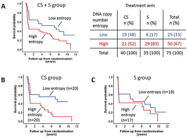 DNA copy number entropy and cancer specific survival.