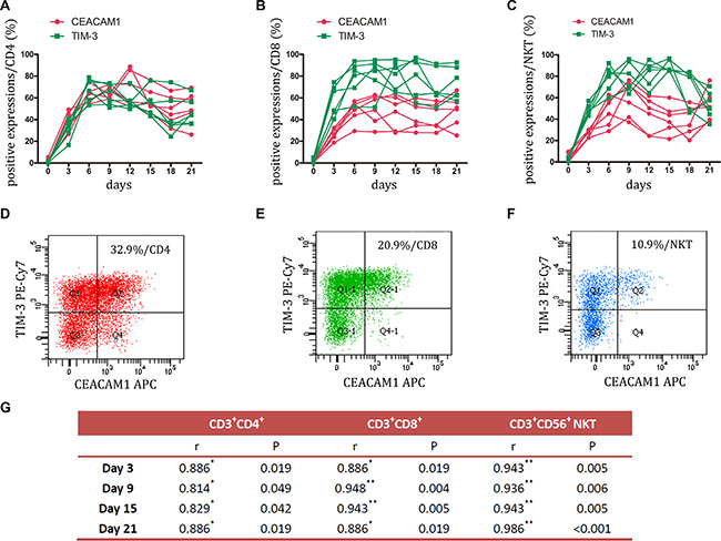 Expression of TIM-3 and CEACAM1 on CIK cells was detected.