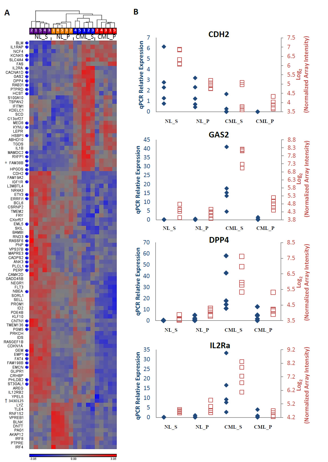 Differentially expressed genes between CML and normal stem and progenitor cells.