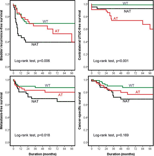 Outcomes of upper urinary tract urothelial carcinoma (UTUC) patients stratified by mutational status of TP53.
