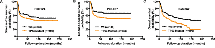 Reduced DFS, DSS, and OS in OSCC patients harboring TP53 mutations.
