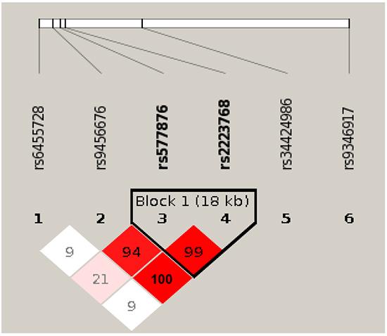 Linkage disequilibrium (LD) plot of 6 SNPs in PARK2 gene.