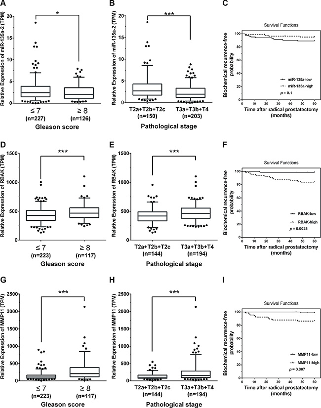 Low miR-135a and high RBAK and MMP11 levels were positively correlated with PCa progression.