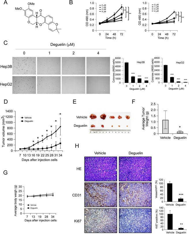 Veratramine suppresses human HepG2 liver cancer cell