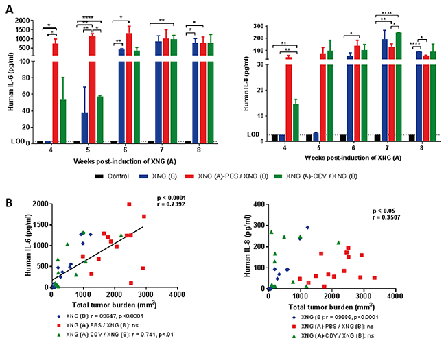 Investigation of antibody and antigen interaction in